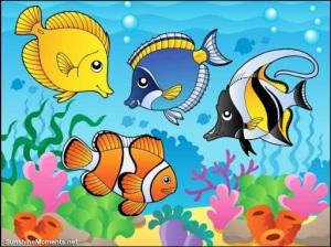 Cute fish puzzle