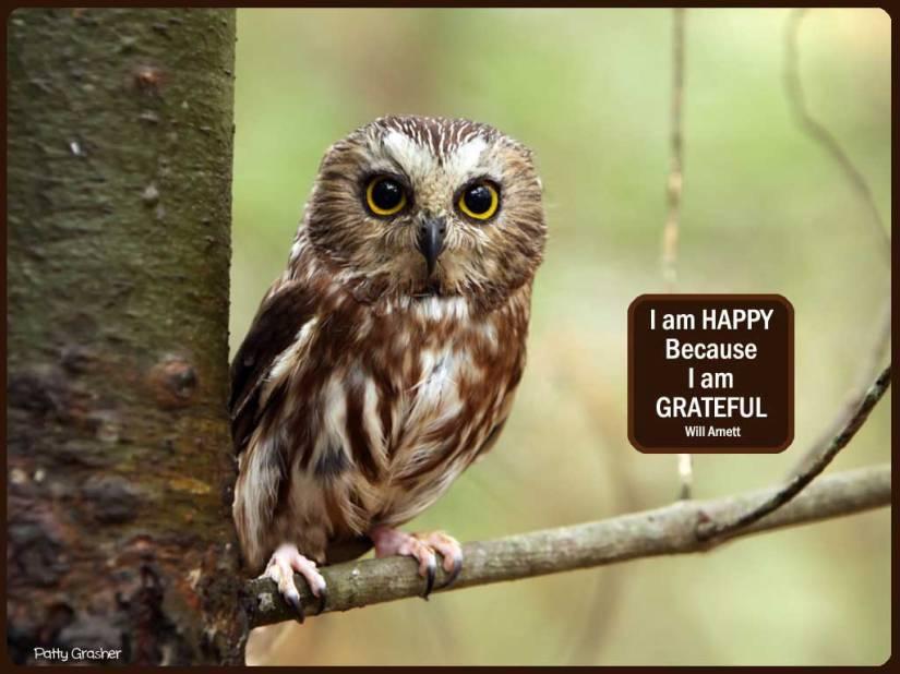Happy-quotes-2