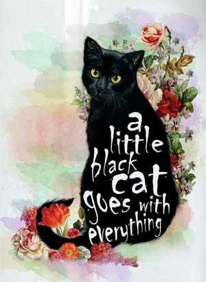 black-cat-everything-300px