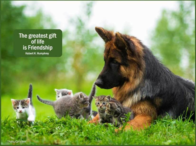 friendship-1