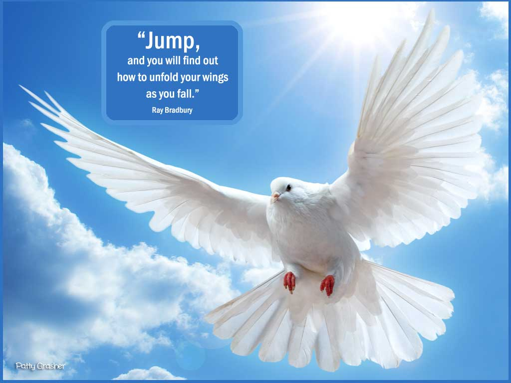 jump-and-you-will-fly